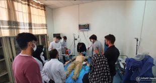 كلية الطب بجامعة الكوفة تنظم دورة تدريبية في تطوير المهارات السريرية والجراحية